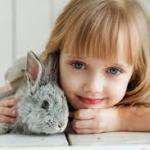 DZicko-króliczek